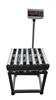 (安庆/合肥/武汉)100公斤/200公斤带轮子可移动电子秤