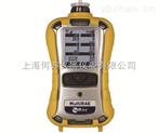 PGM-6208MultiRAE 2有毒有害復合氣體檢測儀