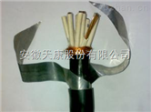 供应天康牌KYJV/KYJV22低压交联控制电缆