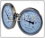 JN-WSSN系列耐震雙金屬溫度計