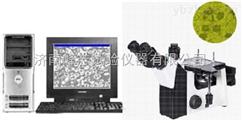 山东济南数码型FCM-W金相显微镜