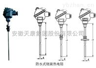 WREK-231防水式铠装热电偶