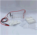 DYCP-31DN型-琼脂糖水平电泳仪(槽)(小号)