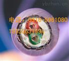 6XV1830矿用电缆-6XV1830总线电缆