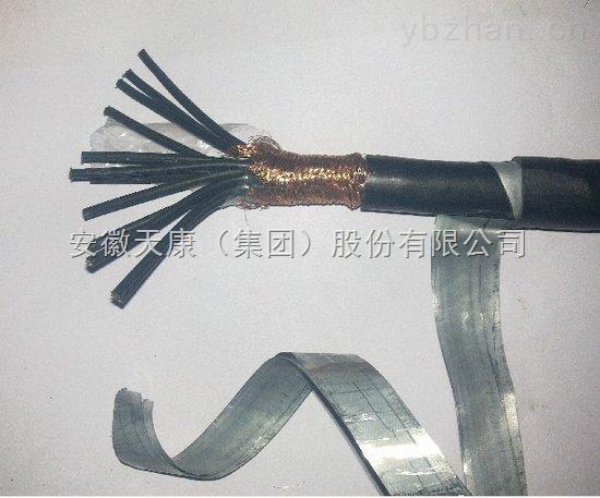 安徽天康kvvp2-22  8*1.5  铠装控制电缆