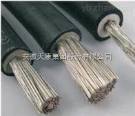 JXN-500V 95mm2安徽天康電機引接線