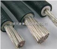 JXN-500V 95mm2安徽天康电机引接线