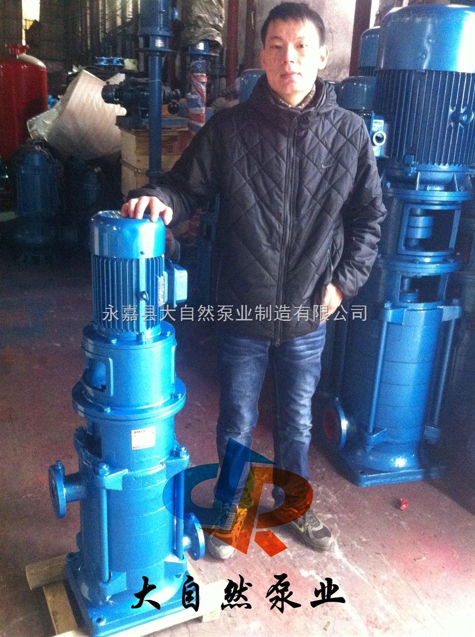供应150DL(DLS)150-20多级立式离心泵