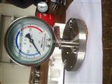 法兰式耐震隔膜压力表