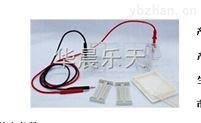 DYCP-31CN瓊脂糖水平電泳儀