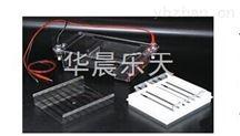 DYCP-31E瓊脂糖水平電泳儀