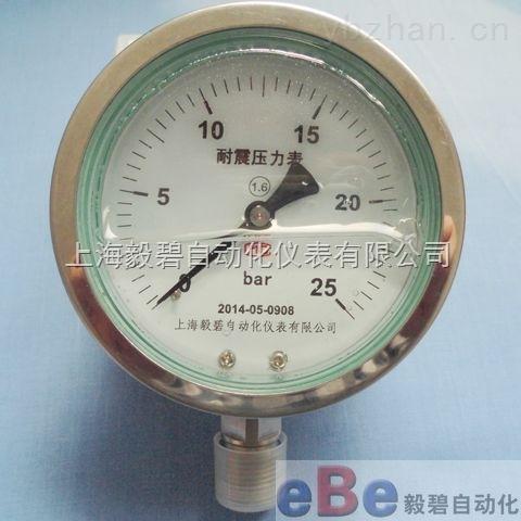上海不锈钢耐震压力表