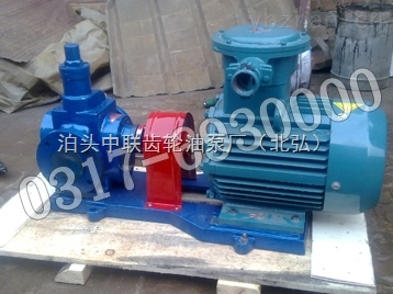 YCBC-YCBC50磁力驅動圓弧泵