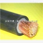 安徽天康生产WDZ-BYJ  1*4²环保辐照交联特种电线电缆