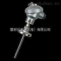 WREK-422铠装热电偶