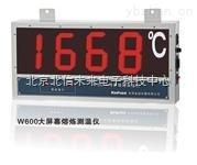HG04-W600-大屏幕熔炼测温仪