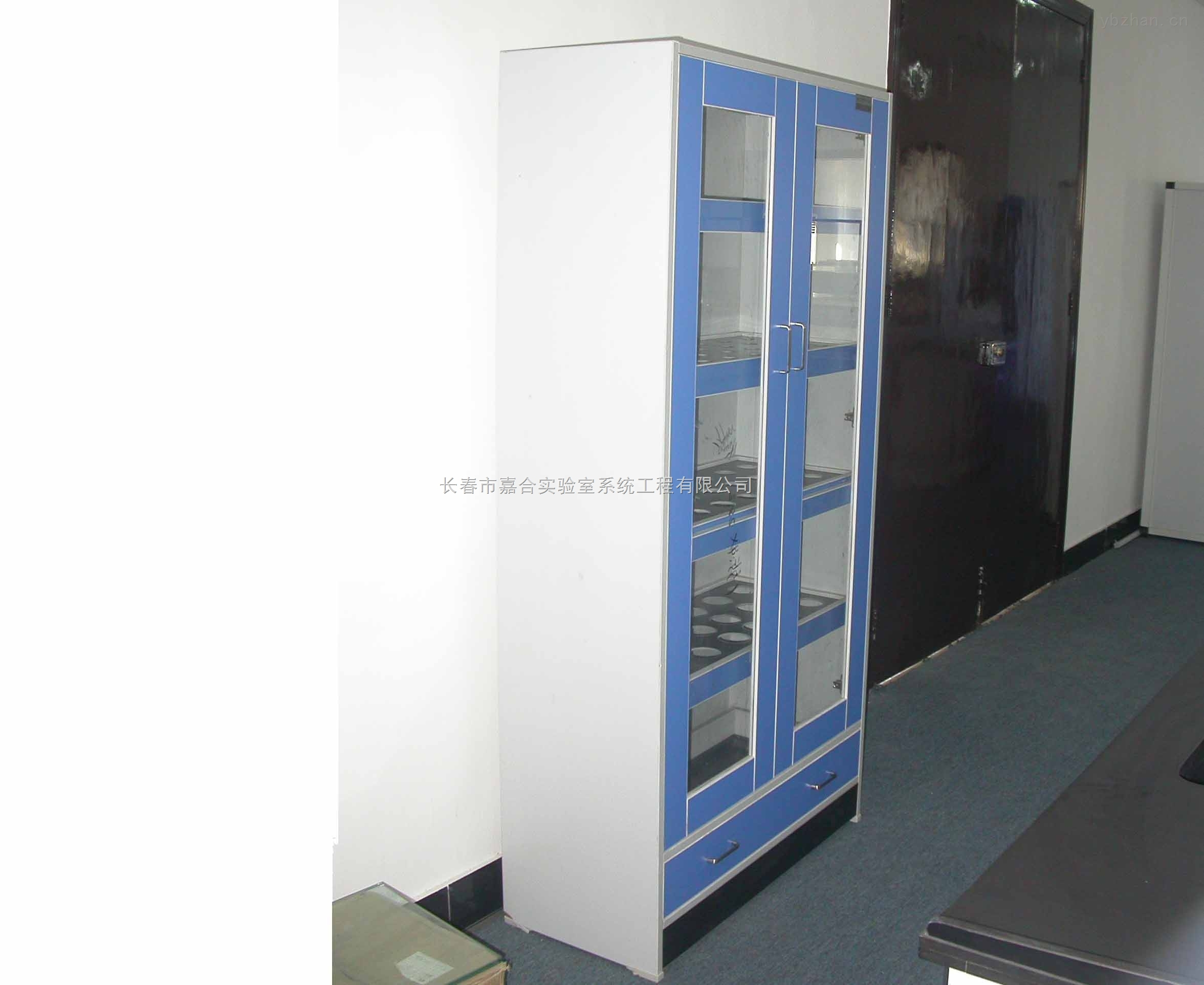 药品柜化验室药品柜板木药品柜实验室专用药品