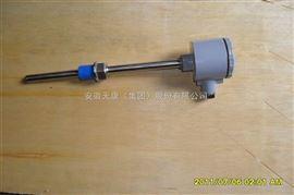 WRMB-240G固定螺纹式一体化防爆热电偶