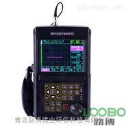 便携式工业无损探伤仪LB520