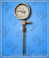 液体压力式温度计WTYY-1021