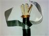 控制电缆 铠装电缆