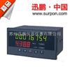 流量积算仪苏州迅鹏SPB-XSJ系列